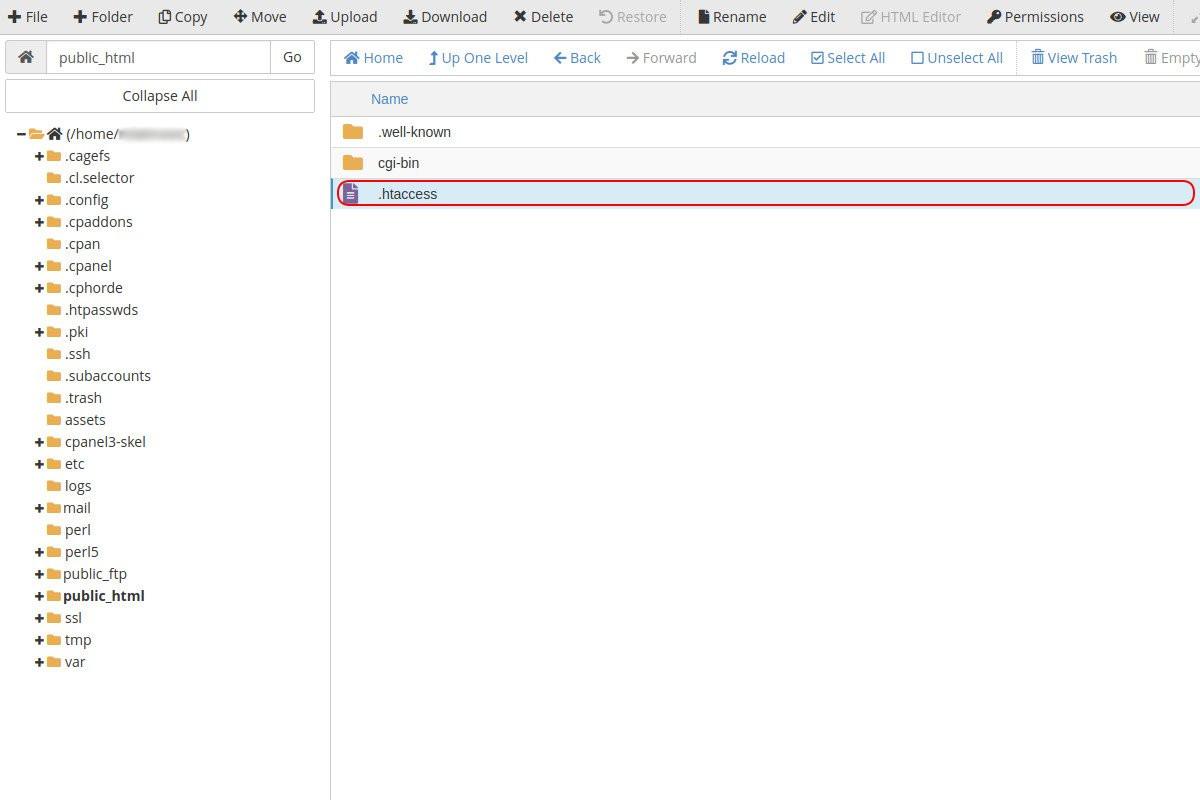 Public HTML folder u cPanelu